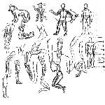 人体练习12 4