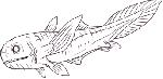 六足类 六鳍鱼