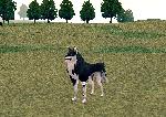 mabinogi 2014 05 18 001